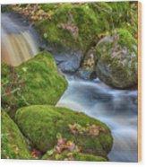 Autumn's Creek 2 Wood Print