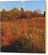 Autumns Field Wood Print