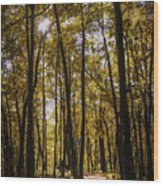 Autumns Fire Wood Print