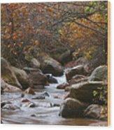 Autumns Flow Wood Print