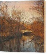 Autumn's Golden Glow Wood Print