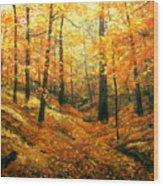 Autumns Hidden Sanctuary Wood Print