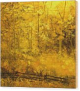 Autumn's Hidden Sanctuary IIi Wood Print