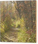 Autumns Path Wood Print