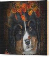 Autumn's Pup Wood Print