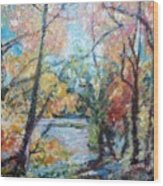 Autumn's Splendor Wood Print