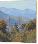 Autumns Telltale Signs  Wood Print