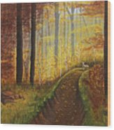 Autumn's Wooded Riverbed Wood Print