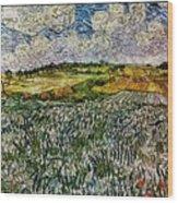 Landscape Auvers28 Wood Print