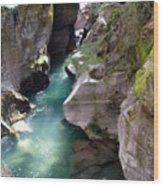Avalanche Creek Glacier National Park Wood Print