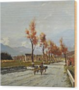 Avellino's Landscape  Wood Print