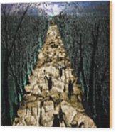 Avenue Des Chats Wood Print