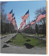 Avenue Of 444 Flags Wood Print
