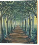Avenue Of Enlightenment Wood Print