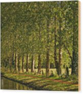 Avenue Of Trees On The Kennet And Avon Canal Wood Print
