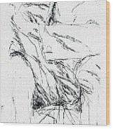 Avigdor Arikha 059 Avigdor Arikha Wood Print