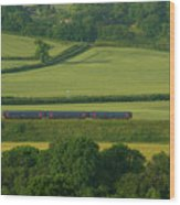 Avon Valley Sprinter  Wood Print