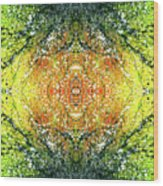 Awakened For Higher Perspective #1425 Wood Print