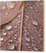 Awareness Wood Print