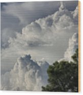 Awesome Cloulds And A Pine Tree Wood Print