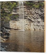 Awosting Falls Wood Print
