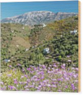 Axarquia In Spring Wood Print