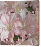 Azalea 5831 Wood Print