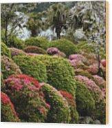 Azalea Bush Garden Wood Print