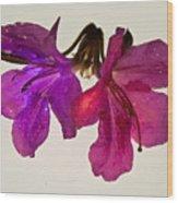 Azalea Doublet Wood Print