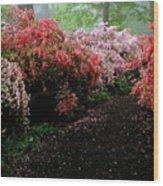 Azalea Pathway Wood Print