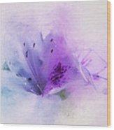 Azalea Splash 2 Wood Print