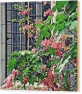 Azaleas At The Window   Wood Print