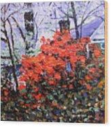 Azaleas In Georgia Wood Print