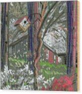 Azaleas In Spring Wood Print