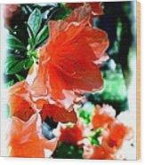 Azaleas In The Spring Wood Print