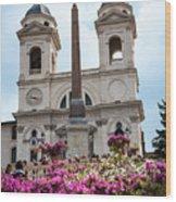 Azaleas On The Spanish Steps In Rome Wood Print
