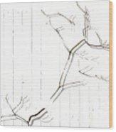 Azelea On White Wood Print
