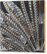 Aztec Danza 2 Wood Print