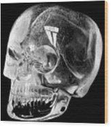 Aztec Rock Crystal Skull Wood Print