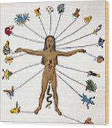 Aztec Zodiac Man, Medical Astrology Wood Print