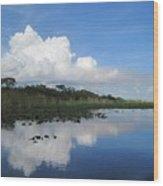 Azul Reflexion Wood Print