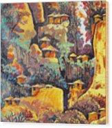 B 364 Wood Print