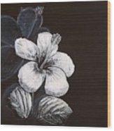B And W Hibiscus Wood Print