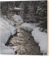 Babbling Brook, Early Spring, Lake Louise, Alberta Wood Print
