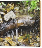 Babbling Brook Wood Print