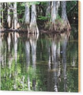 Babcock Wilderness Ranch - Alligator Lake Reflections Wood Print