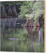 Babcock Wilderness Ranch - Peaceful Alligator Lake Wood Print