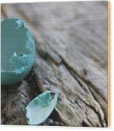 Baby Blue 3 Wood Print