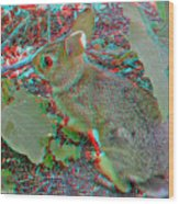 Baby Bunny - Use Red-cyan 3d Glasses Wood Print