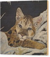 Baby Cougar In Snow Wood Print